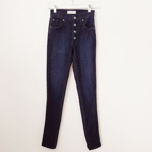 James Jeans 24 High Class Skinny Button Fly Jeans